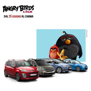 anry-birds